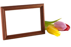 Tulips and wooden frame Stock Photo