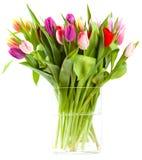 Tulipvase Images libres de droits