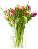 Tulipvase Image stock