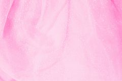 Tulle rose Photos stock