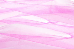 Tulle rose Image stock