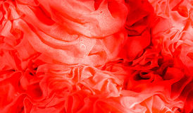 Tulle rossa Immagini Stock Libere da Diritti