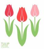 Tulp reeks stock illustratie
