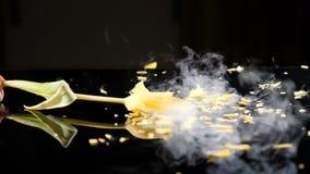 Tulp in vloeibare stikstof het breken wordt bevroren die De ineenstortingen van de Frosenbloem in een lijst Langzame motionon Sym stock videobeelden