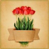 Tulpan blommar bukett- och hantverkbandet Royaltyfria Bilder
