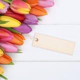 Tulpan blommar i vår- eller moders dag med hälsningkortet på a royaltyfri foto
