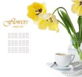tulpan för kaffekopp Royaltyfri Fotografi
