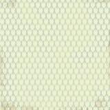 Tulpan för ljus för whith för modell för blek vektor för pastellfärgad färg sömlösa på grungebakgrund Textur för inpackningspappe Royaltyfri Fotografi