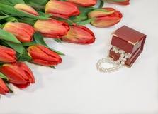 Tulpan för röd vår med den lilla asken med pärlaromantikergåva Arkivbild