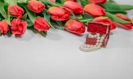Tulpan för röd vår med den lilla asken med pärlaromantikergåva Royaltyfri Foto