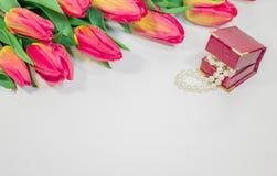 Tulpan för röd vår med den lilla asken med pärlaromantikergåva Arkivbilder
