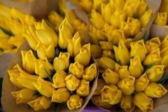 Tulpan härliga buketttulpan färgrika yelloetulpan tulpan i våren, färgglad tulpan Royaltyfria Bilder