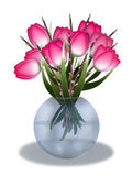 Tulpan i en vas på vit Arkivbild