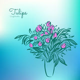 Tulpan i vase Skissa teckningen på färgrik bakgrund Arkivfoto