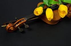 Tulpan och fiol Royaltyfri Foto