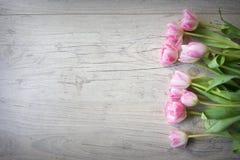 Tulpan på en träbakgrund Royaltyfri Fotografi