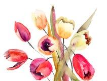 Tulpanblommor, vattenfärgmålning Arkivbild
