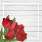 Tulpanbukett på träbakgrund Royaltyfri Bild