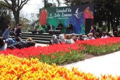Tulpanfestivalen som är emirgan parkerar den istanbul kalkon Arkivfoton