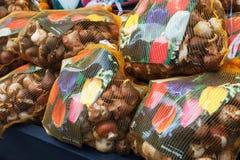 Tulpankulor packade i stora färgrika påsar, Amsterdam Arkivbild