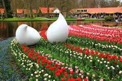 Tulpanutläggning parkerar på Keukenhof Nederländerna Royaltyfria Bilder