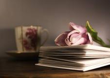Tulpe auf Buch und Cup stockfoto