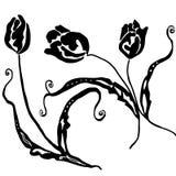 Tulpe-Blume lokalisiert auf weißem Hintergrund Stockfotografie