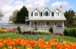 Tulpe-Haus Lizenzfreies Stockbild