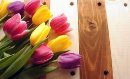 Tulpen über Holztisch Stockbild