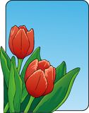 Tulpen stock illustratie