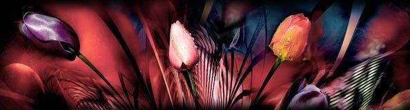 Tulpen abstrackt Lizenzfreie Stockfotografie
