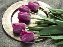 Tulpen auf einer Leinwand Stockbilder