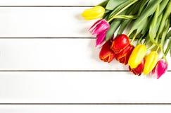 Tulpen auf einer weißen Tabelle Stockbild