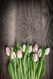 Tulpen auf Holz Stockbilder