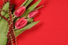 Tulpen auf Rot Stockfotos