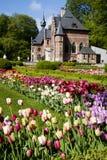 Tulpen in België Stock Foto's