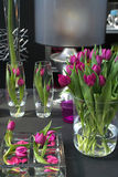 Tulpen in binnenland Stock Afbeelding