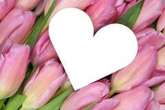 Tulpen blüht mit Herzen als Symbol der Liebe auf Müttern oder Valent Lizenzfreie Stockfotos