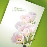 Tulpen. De lente bloeit de kaart van het uitnodigingsmalplaatje vector illustratie