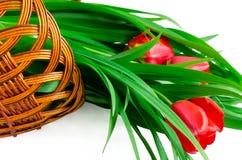 Tulpen in een mand Royalty-vrije Stock Foto's