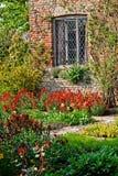 Tulpen in een tuin stock foto's