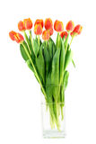 Tulpen in een vaas Stock Afbeeldingen