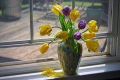 Tulpen in einem Fenster Lizenzfreie Stockfotografie