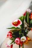 Tulpen in einem Glas Stockfoto