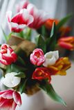 Tulpen in einem Glas Lizenzfreie Stockfotografie