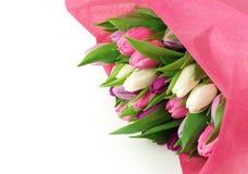 Tulpen eines Blumenstraußes Stockfoto
