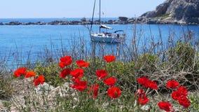 tulpen en jacht bij blauwe reis, knidos, datca, Turkije stock video
