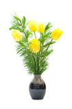 Tulpen en lariks stock afbeeldingen
