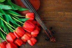 Tulpen en viool stock afbeeldingen