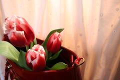 Tulpen en vrouwen` s zak Stock Afbeelding